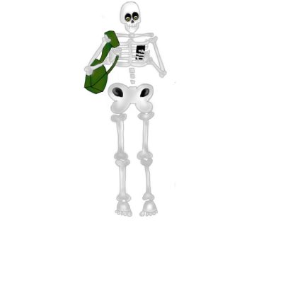 Rémy - adulte squelette